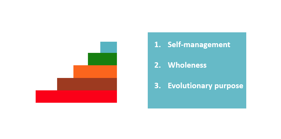 5 color bars red, amber, orange, green and a teal text block that says 1. self-management 2. wholeness 3. evolutionary purpose